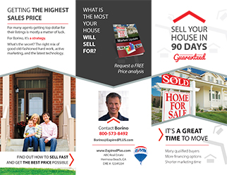 Borino Brochure And Expired Listings Postcards Complete